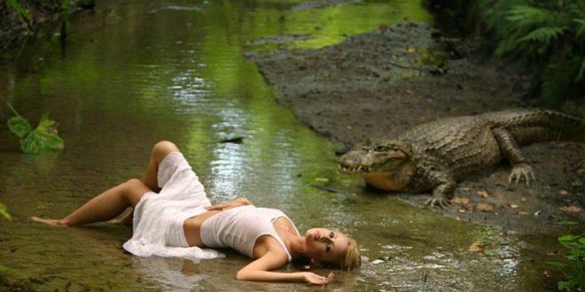 Каждая девочка должна хоть раз в жизни полюбить крокодила