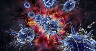 Вирусы сознания